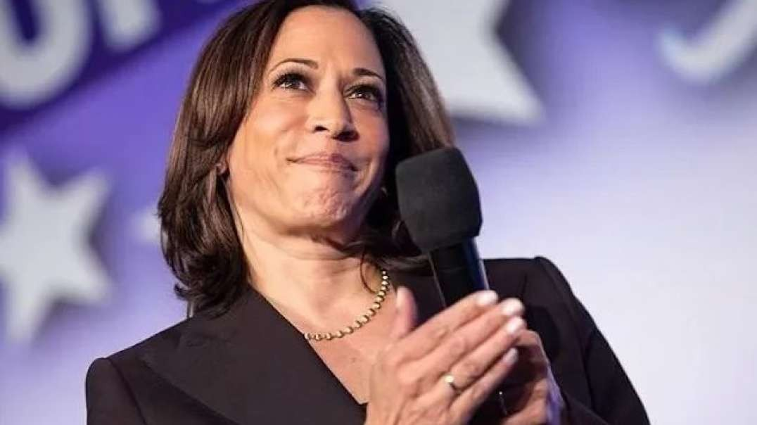 Kamala Harris Has Reportedly Begun Taking Head Of State Phone Calls With World Leaders