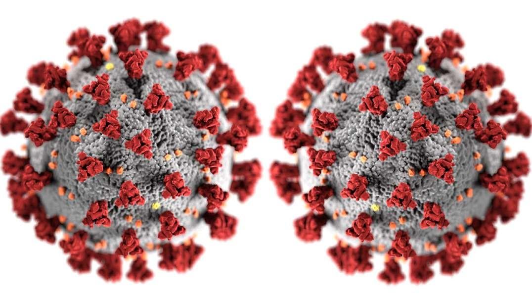 "ABC's Good Morning America Pushes New COVID ""Double Mutant"" Variant, DeSantis Bans Vaccine Passports"