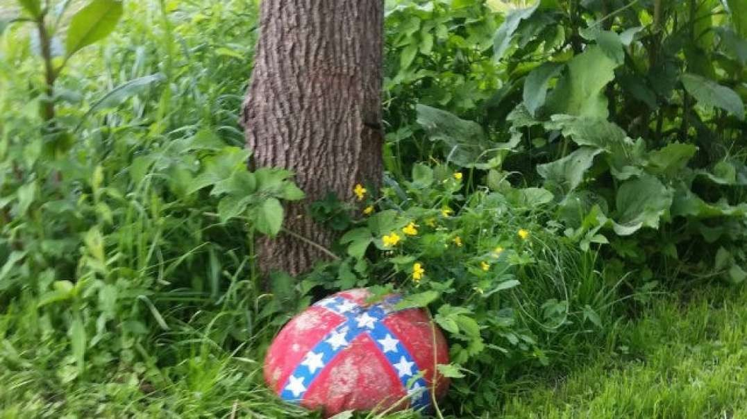 NY Appellate Court Threatens Mother's Custody Of Her Child Over Confederate Symbol In Her Driveway