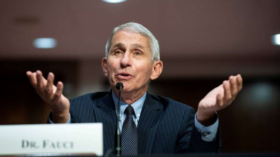White House Reportedly Mulling Fauci Exit Strategy, Book Cancelled Among Massive Email Release