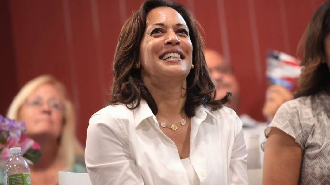 Harris-Backed Organization Bails Out Domestic Assault Criminal Who Killed A Man Weeks Later