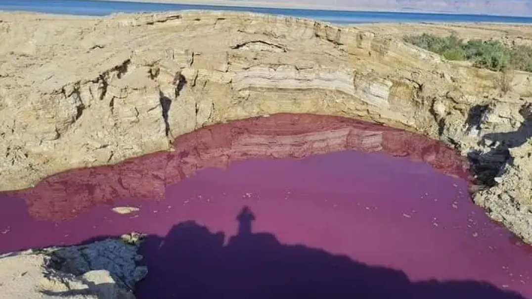 Scientists Are Investigating Why A Pool Of Water Near The Dead Sea Has Suddenly Turned Blood Red